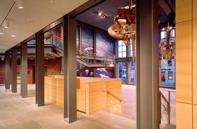 New Bedford Whaling Museum photo
